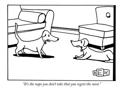 """""""It's the naps you don't take that you regret the most."""" - New Yorker Cartoon"""
