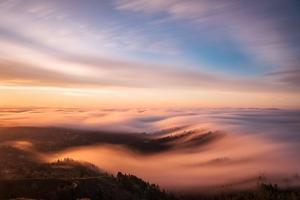 Golden Morning by Bruce Getty