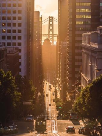Morning Trolley 2 by Bruce Getty