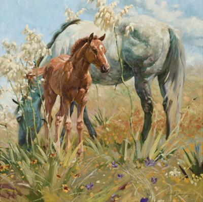Springtime in the Llano Estacado