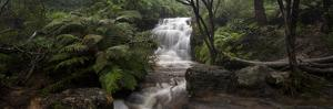 Blue Mountains Waterfall by Bruce Hood
