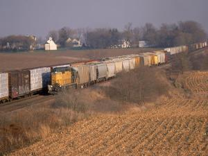 Freight Trains, La Fox, IL by Bruce Leighty