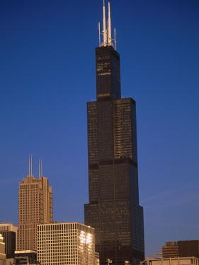 Sears Tower in the Afternoon by Bruce Leighty