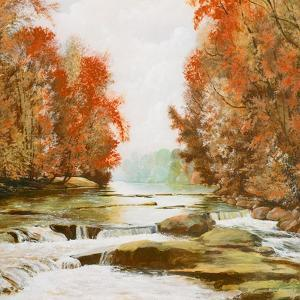 Autumn at Firemen's Park by Bruce Nawrocke