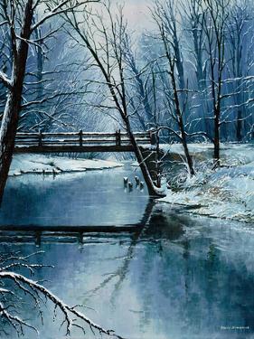 First Snow by Bruce Nawrocke