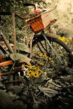 In the Fields I by Bruce Nawrocke