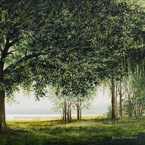 Lake Shore Drive II by Bruce Nawrocke