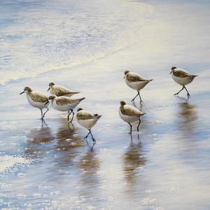 Sand Dancers Square by Bruce Nawrocke