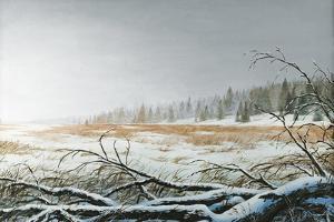 Snowy Morning by Bruce Nawrocke