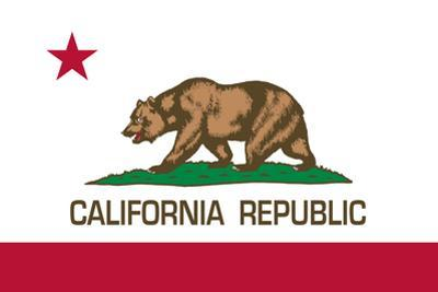 California State Flag by Bruce stanfield