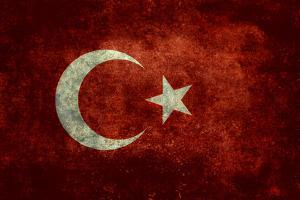 National Flag Of Turkey by Bruce stanfield