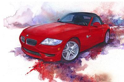 '06 BMW Z4 by Bruce White