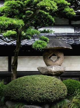 Garden in Senso-ji Temple by Bruno Ehrs