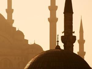Two Mosques by Bruno Ehrs