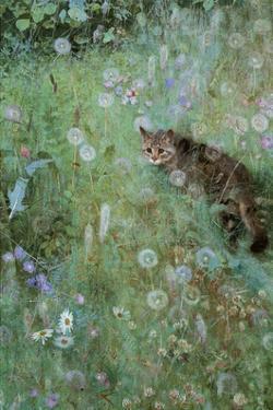 Jeppe in a Field of Flowers, 1884 by Bruno Liljefors