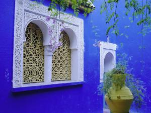 Jardin Majorelle, Marrakech, Morocco by Bruno Morandi