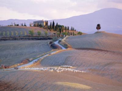 Landscape Near Pienza, Siena Province, Tuscany, Italy