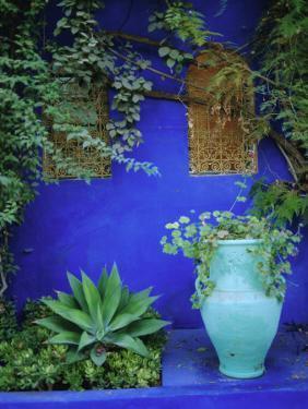 Majorelle Gardens, Marrakesh, Morocco, North Africa by Bruno Morandi