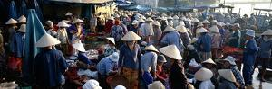 The Market, Hoi Han (Hoi An), Vietnam, Indochina, Southeast Asia, Asia by Bruno Morandi