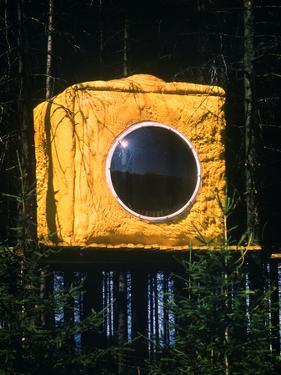 Bubble Window in Tree House