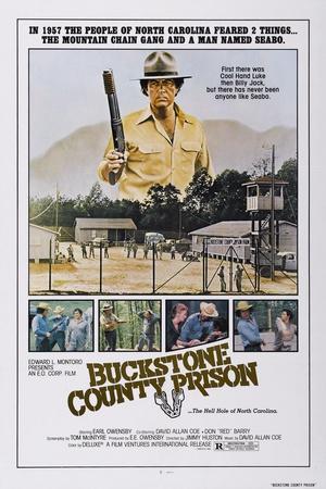 https://imgc.allpostersimages.com/img/posters/buckstone-county-prison-aka-seabo-earl-owensby-top-1978_u-L-PT8YMS0.jpg?artPerspective=n