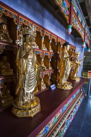 https://imgc.allpostersimages.com/img/posters/buddha-collection-under-the-golden-maitreya-statue-beopjusa-temple-complex-south-korea-asia_u-L-PQ8T0B0.jpg?p=0