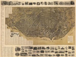 Buffalo 1902 Bird's Eye View 16x23, New York, United States