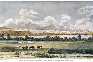 Buffalo, 19th Century