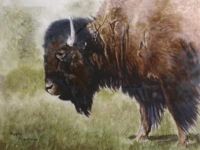 https://imgc.allpostersimages.com/img/posters/buffalo_u-L-PSH0WM0.jpg?p=0