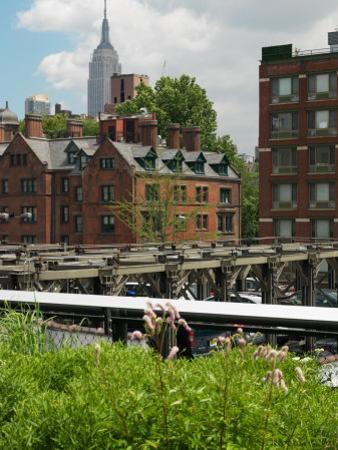 Buildings in a City, High Line Park, 20th Street, Empire State Building, Manhattan, New York City,
