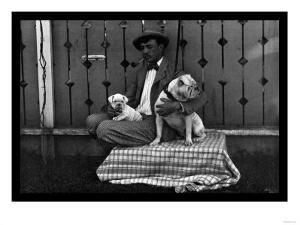 Bulldog, Master, and Pup