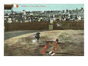 Bullfight, Tijuana, Mexico