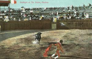 Bullfight, Tijuana, Mexico