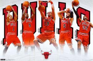 Bulls - Team 2011