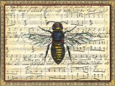 Bumblebee Harmony II