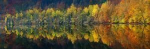 Autumnal Silence by Burger Jochen