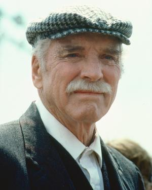 Burt Lancaster - Field of Dreams