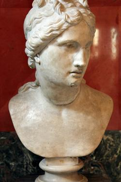 Bust of Aphrodite, Goddess of Beauty and Love