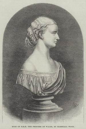 https://imgc.allpostersimages.com/img/posters/bust-of-hrh-the-princess-of-wales_u-L-PUQDFI0.jpg?artPerspective=n