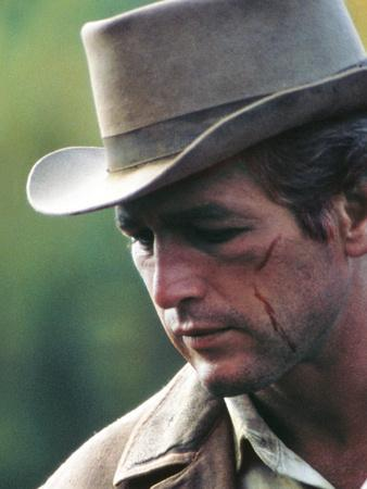 https://imgc.allpostersimages.com/img/posters/butch-cassidy-and-the-sundance-kid_u-L-PRR7GH0.jpg?artPerspective=n