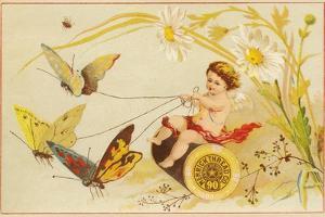 Butterflies Pulling Cherub on Thread Spool Chariot