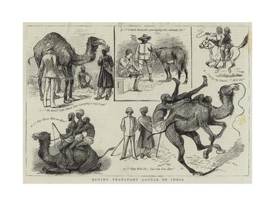 https://imgc.allpostersimages.com/img/posters/buying-transport-cattle-in-india_u-L-PVM7750.jpg?p=0