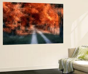 Autumn Lane by C. McNemar