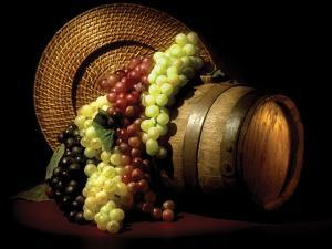 Wine Grapes by C. McNemar