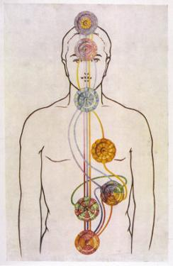 The Seven Chakras and the Streams of Vitality by C.w. Leadbeater