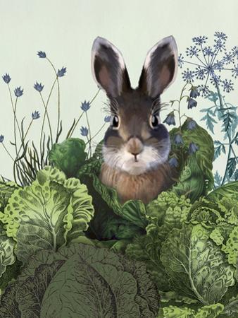 Cabbage Patch Rabbit 4