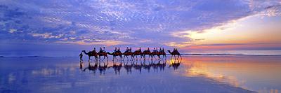https://imgc.allpostersimages.com/img/posters/cable-beach-camels_u-L-Q10PC6U0.jpg?p=0