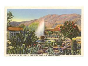 Cactus Garden, Palm Springs, California