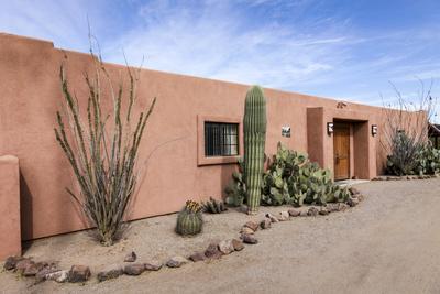 https://imgc.allpostersimages.com/img/posters/cactus-outside-an-adobe-building-tucson-arizona-usa_u-L-Q1D08E50.jpg?artPerspective=n