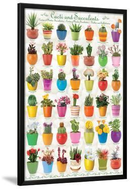 Cactus & Succulents Collage